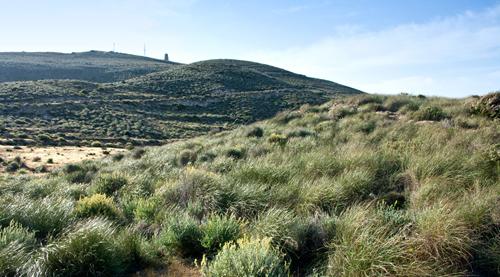 Subida al Cerro de los Lobos