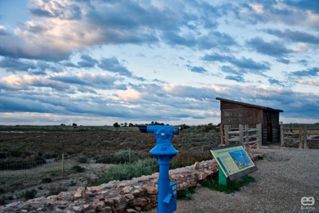 Observatorio-de-aves-de-Cabo-de-Gata