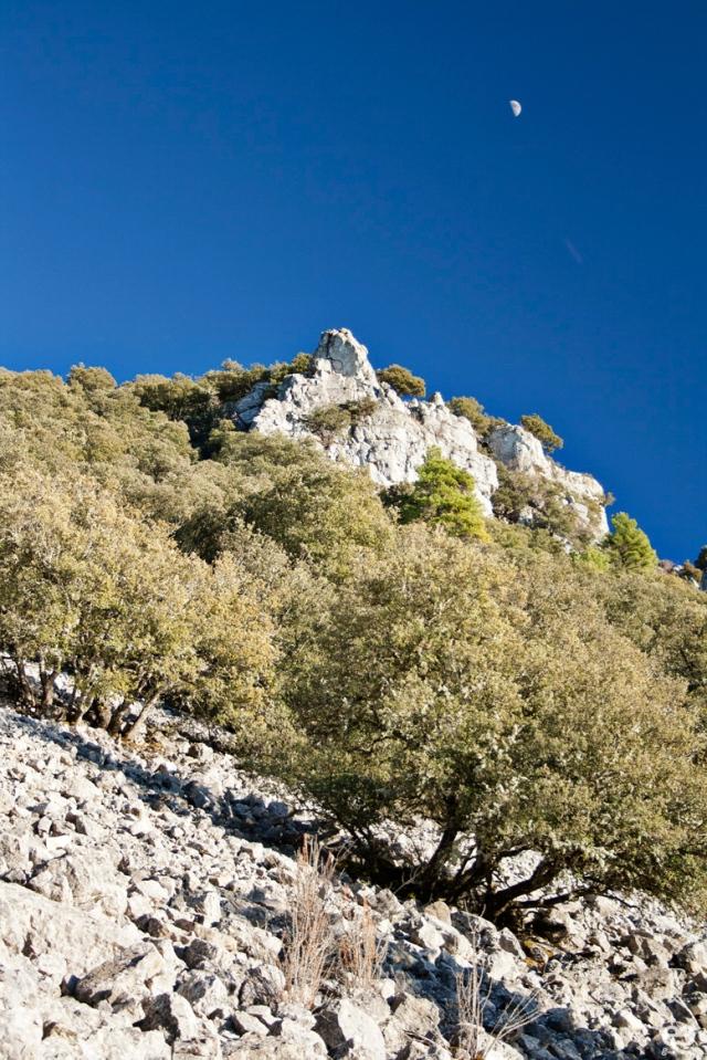 serrania-de-Cuenca