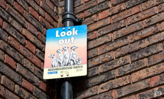 vigilancia-ciudadana