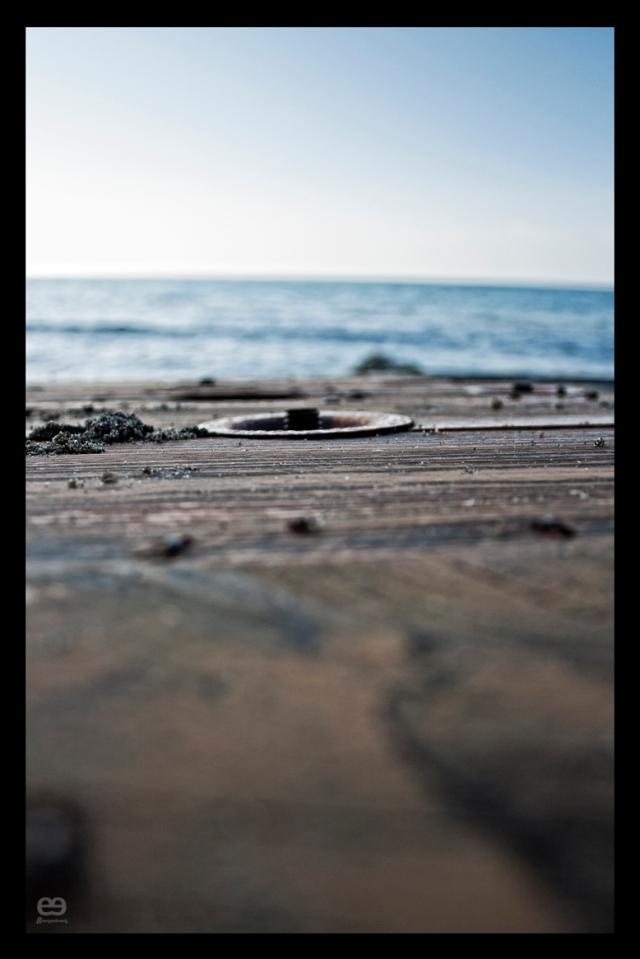 Tornillos a la mar V