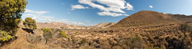 Panorama_valle-de-acebuches