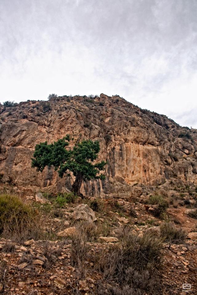 zona-de-escalada
