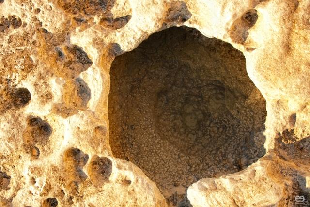 acantilados-fosiles-3